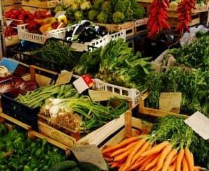 イタリア野菜商談会