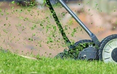西洋芝刈込み イメージ