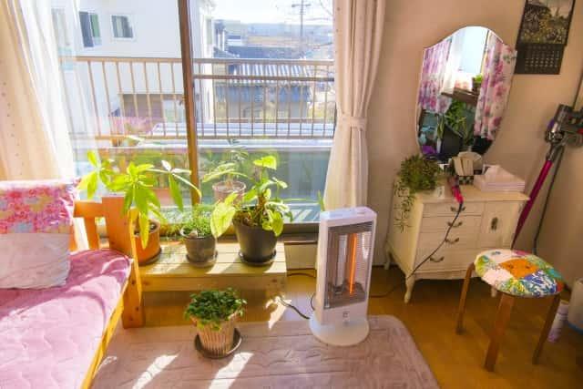 観葉植物とヒーター