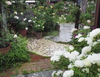 庭とタイル