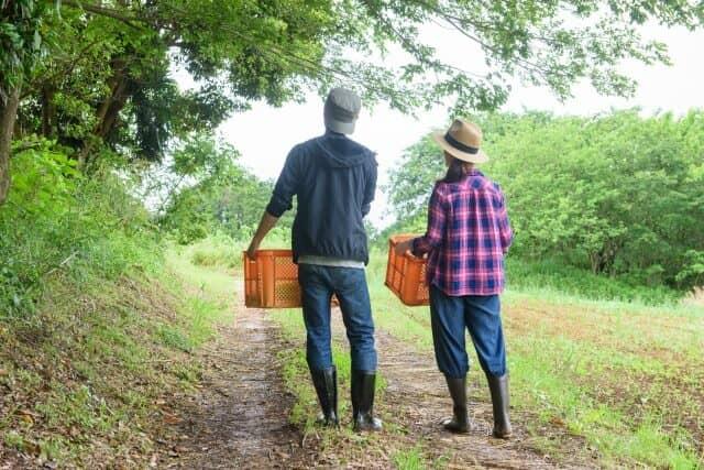 農作業をする夫婦