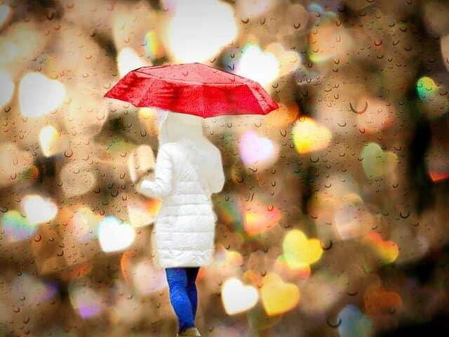 折りたたみ傘を持つ女性