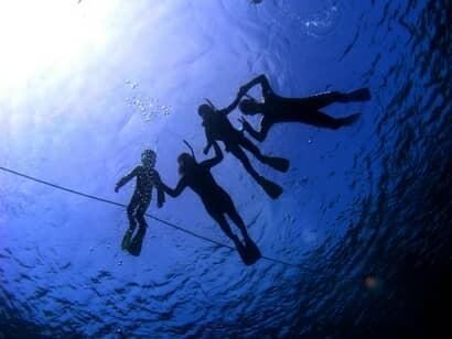 ダイビング中の4人の人影