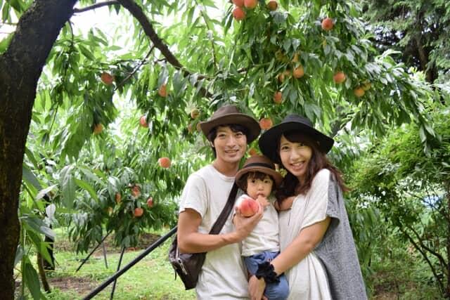 桃狩りに来た家族