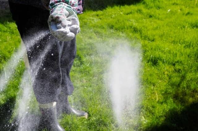 芝生に肥料を与える人