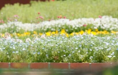 花壇レンガ