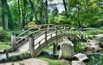 和風の庭園