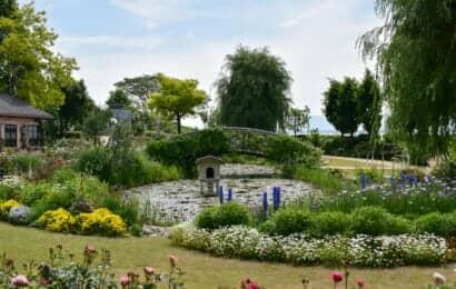 英国風の庭