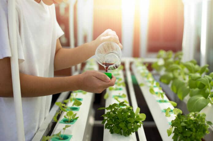 農業用液体肥料(液肥)の使い方 農学博士が解説!種類やメリットデメリットやおすすめ製品を紹介