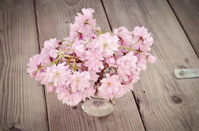 瓶に活けられた桜の花