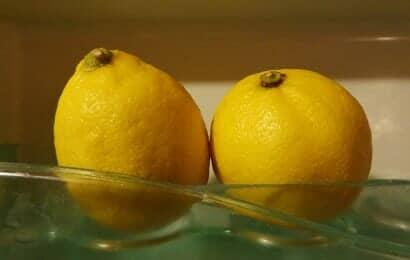 冷蔵庫の中のレモン