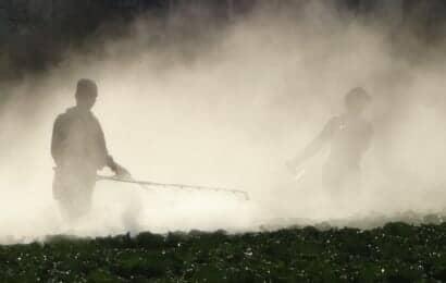 露地栽培での農薬(液体)散布