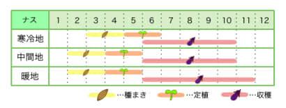 ナス 新規就農レッスン 栽培カレンダー