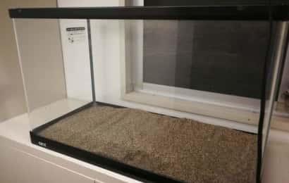 水槽に砂を敷く