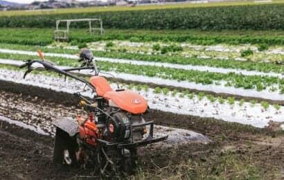 レタスの植え付けと耕運機