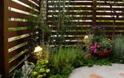 日かげがちな庭でもできるガーデニング