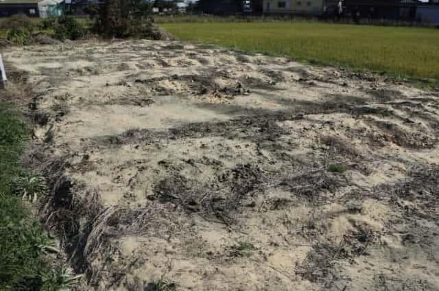 EM菌ぼかし肥料を使った畑の土づくり