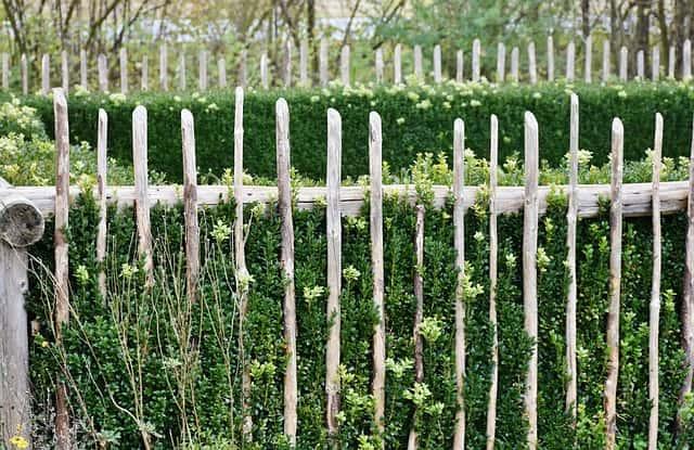 グリーンと細い木製のガーデンフェンス