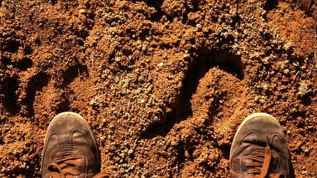 柔らかい土には長い固定ピンを