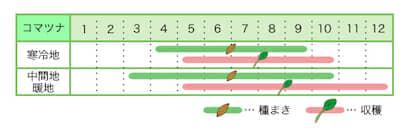 新規就農レッスン 栽培カレンダー コマツナ