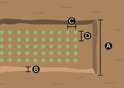 シュンギクの畝サイズ