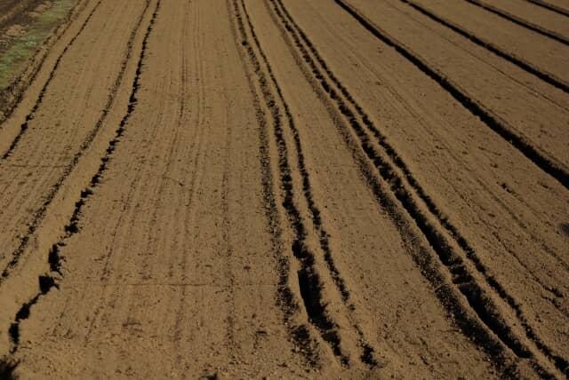 土壌消毒前の土ならし