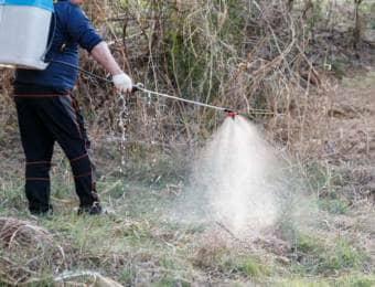 雑草に除草剤をまく
