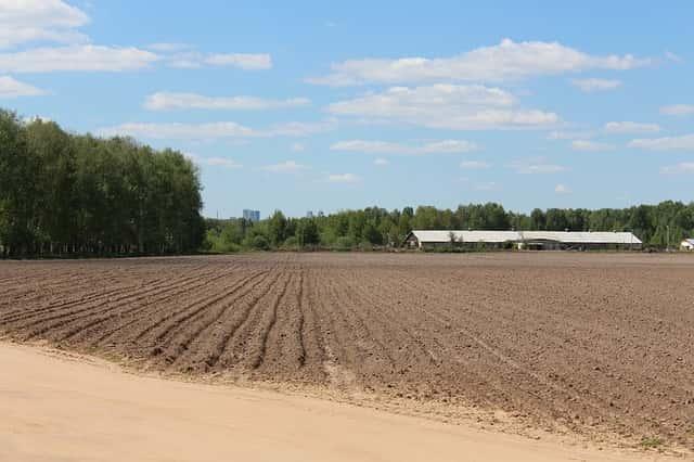 土嚢消毒前の圃場整備