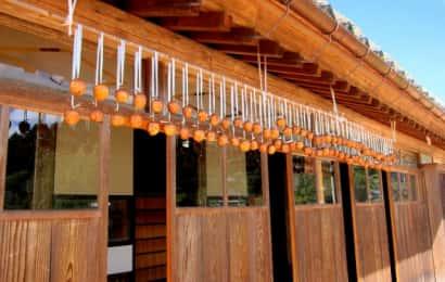 木の家の軒下に干し柿がたくさん吊るされている