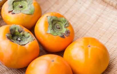 ザルに収穫した柿を乗せる