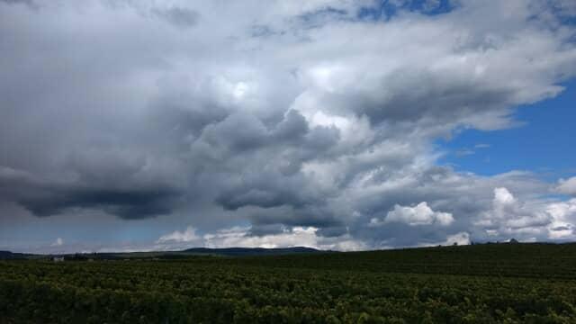 雨の降りそうな空