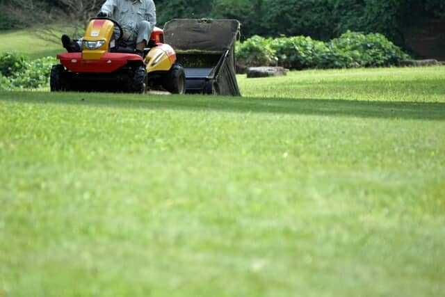 芝刈り機を使用する様子