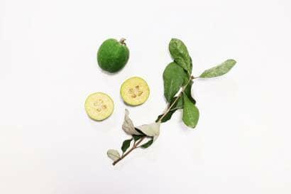 フェイジョアの実と枝と葉