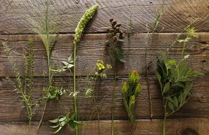 フラワーアレンジメント用の草花