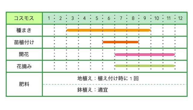 コスモス、育て方、栽培カレンダー