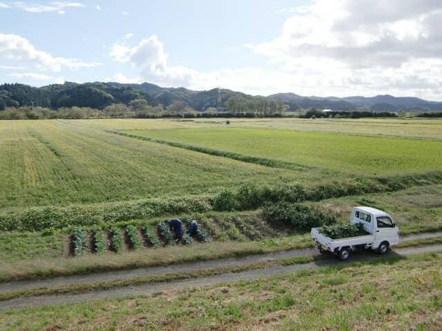 軽トラックのある風景