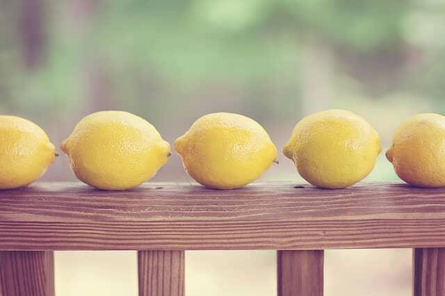 木の柵にレモンが数個並んでいる