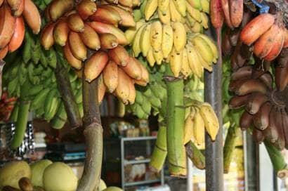 熱帯のフルーツ市場で売られるバナナ