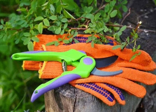 庭の柵に乗った、剪定ばさみとオレンジの軍手