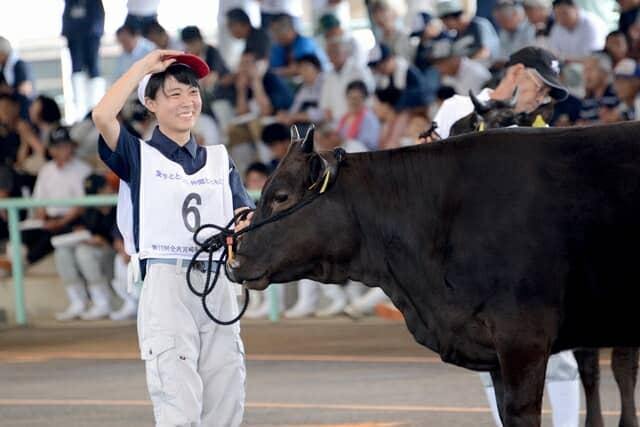 牛を引く女子高生