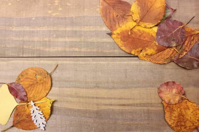 柿渋を塗った木の板
