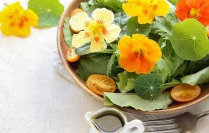 ナスタチウムの花と葉のサラダ