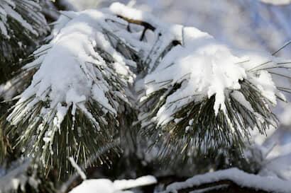 二十四節気、冬、農業、閉塞冬成
