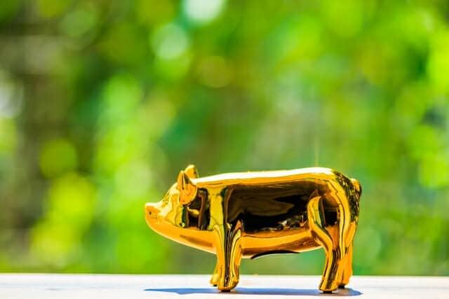 タケイファーム、お金にならない対価、金の豚の貯金箱