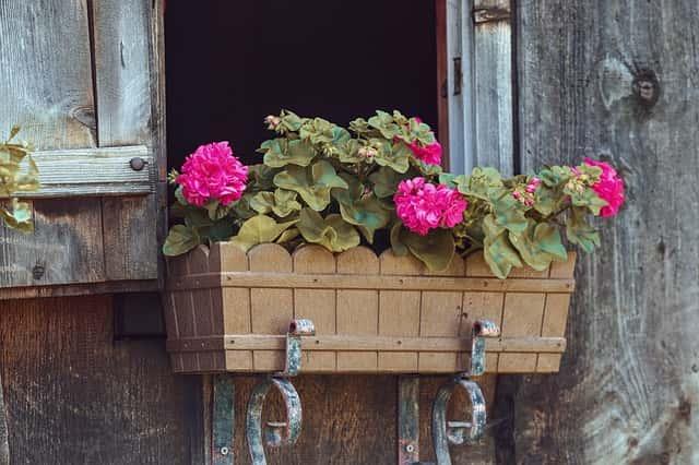 ピンクの花が飾られた木製のプランター