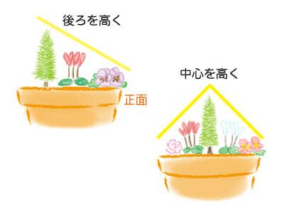 寄せ植え、苗の配置