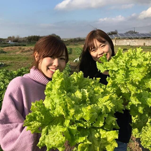 収穫野菜を持つ女子たち