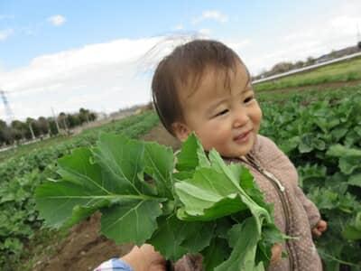 野菜を持って歩く子ども