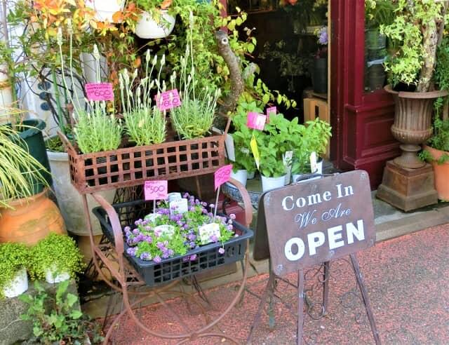 ハーブや花が売られている花屋さん