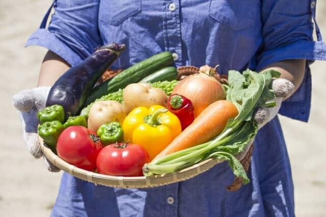 かごに入れられた野菜